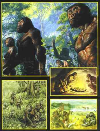 O Caráter Científico da Doutrina da Evolução