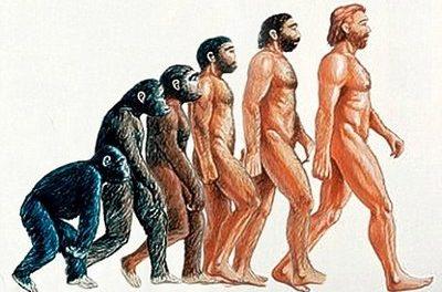 A Macroevolução Questionada