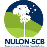 NULON-SCB