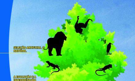 Folha Criacionista Nº. 14 – 1º Quadrimestre de 1977 – Ano 6
