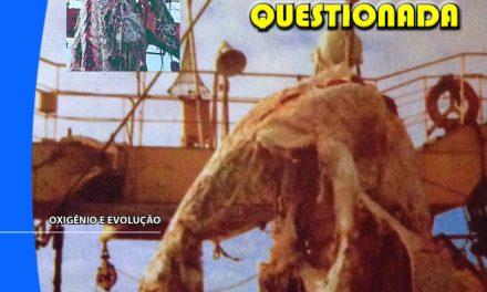 Folha Criacionista Nº. 16 – 3º Quadrimestre de 1977 – Ano 6