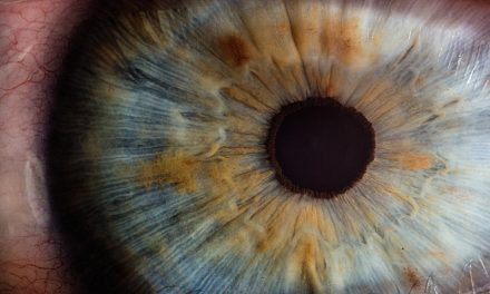 O Olho – Acaso ou Planejamento?